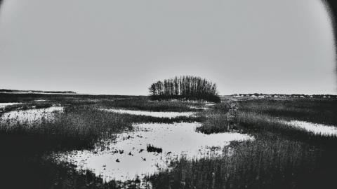 20121109-224440.jpg