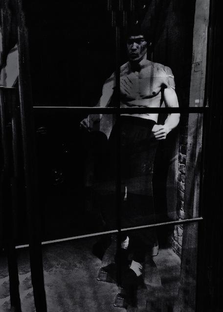 Bruce Lee WebS